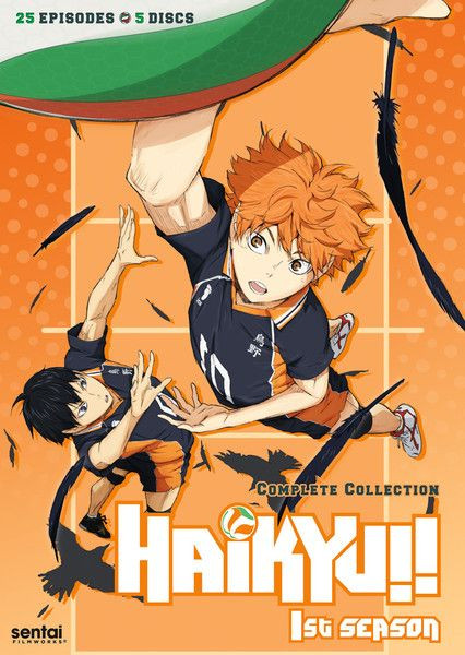 On an orange background  Shoyo Hinata is jumping his hand hitting the one-fourth visible volleyball on the top left of the poster below the ball Kayegama is jumping. Around them there are crow feather and on the bottom middle there is an outline of a crow and in the middle it's written Haikyuu!!
