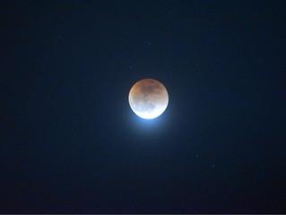 月に願いを~☆