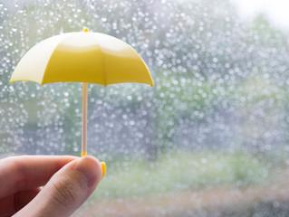 雨の中のお見合い