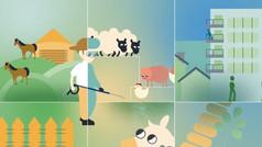 Bio-X Global Animation   Kleanze Air