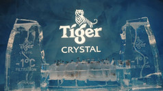 Tiger Crystal Cold Party 2019 [Director's Cut]