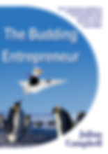 Budding Entrepreneur ebook