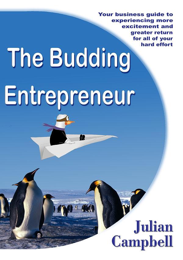 Budding Entrepreneur ebook