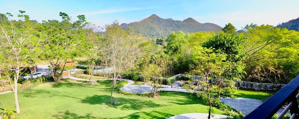 Te Mata Landscape
