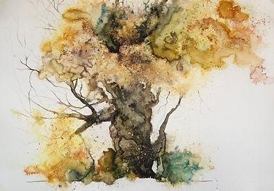 Tree of Fire Series No 3