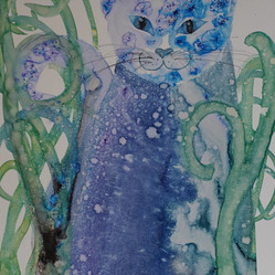 China Blue Cat