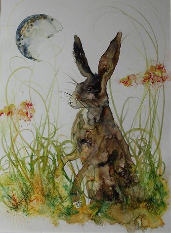 Mystical Hare.JPG