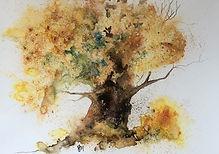 The Old Oak