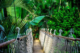 Mystic Mountain Jamaica