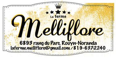 logo_melliflore_test.jpg