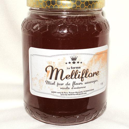 Miel pur de fleurs sauvages, récolte d'automne.1kg