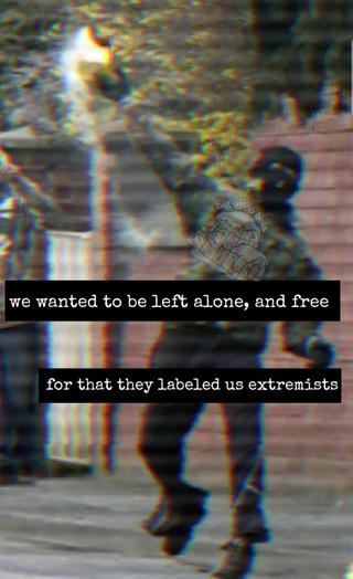 Memes as Propaganda