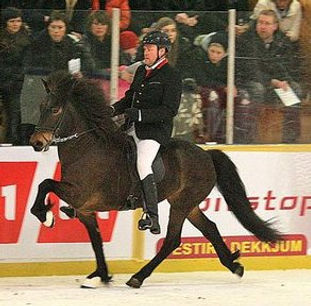Hestheimar-Kjarnorka-tolt.jpg