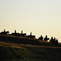 Group of tourists riding in the sunset