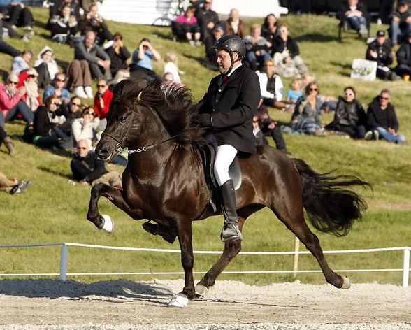 Hestheimar-Loki.jpg