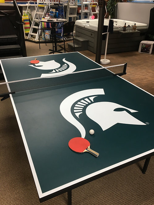MSU Ping Pong Table(regulation size)