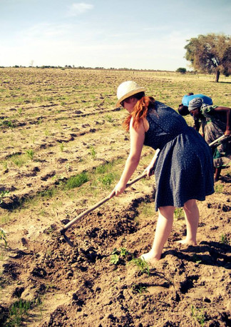 Join the work in the Mahangu fields