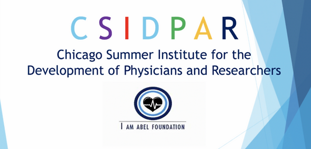 Chicago Summer Institute for the Develop