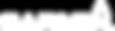 Garmin_Logo_Rgsd-large-allwhite_copy.png
