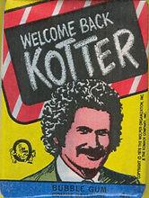 Welcome Back Kotter 1976.jpg