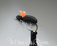 scarabee (Copier).png