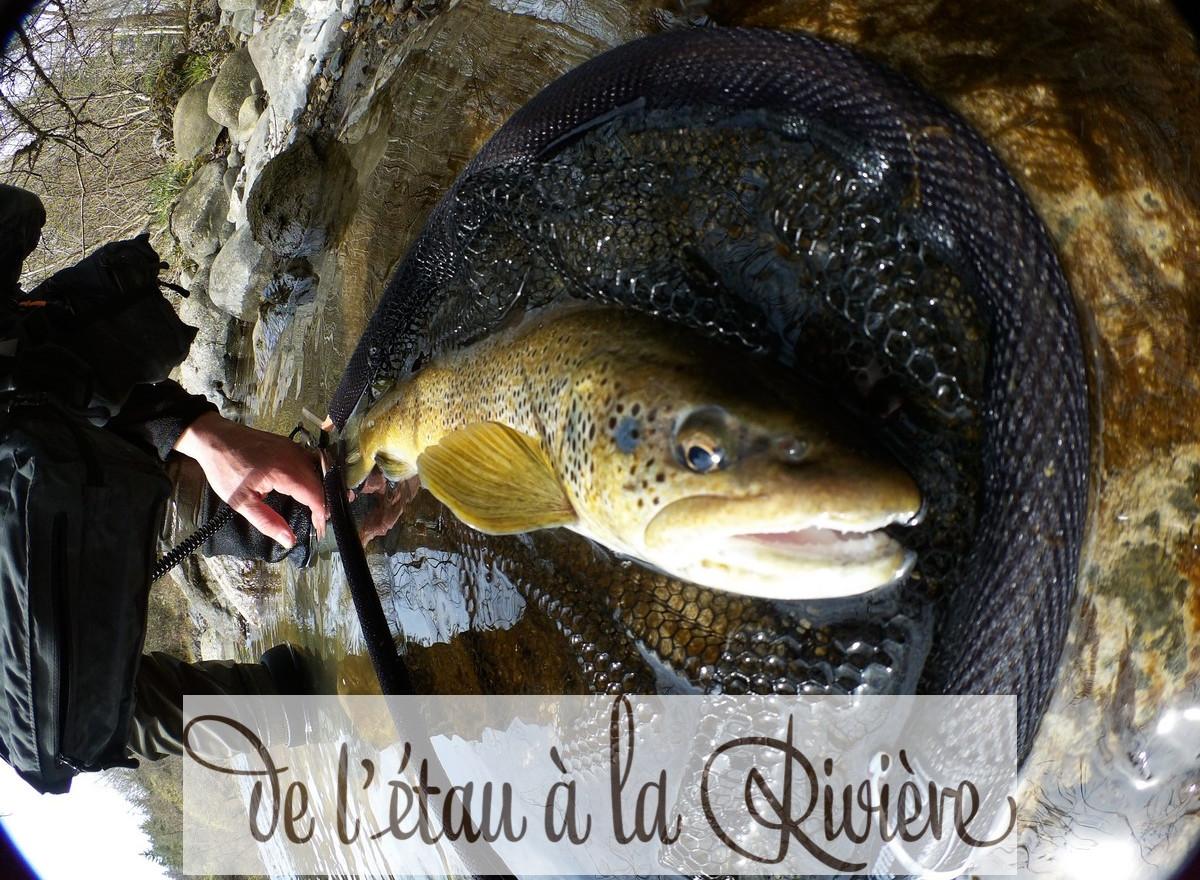 Ce poisson est mon record en France à l'heure actuelle...serez vous trouver sa taille ???