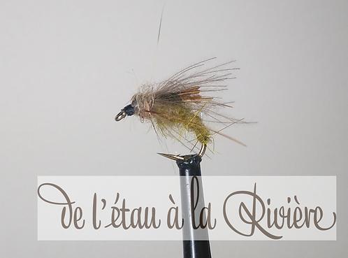 nymphe de trichoptère olive NS 1