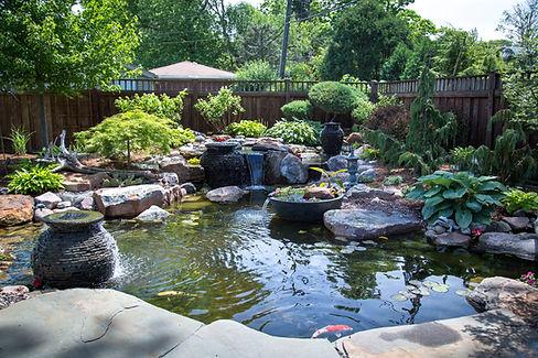 Ecosystem Pond_13.jpg