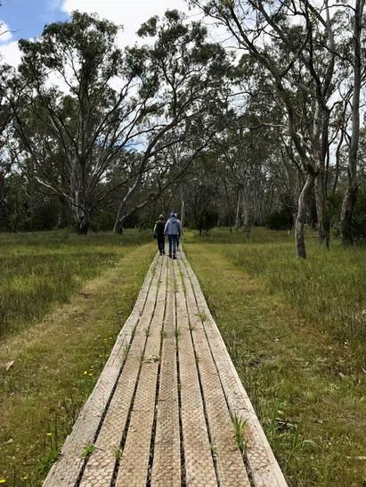 Board walk to Newlands Lake