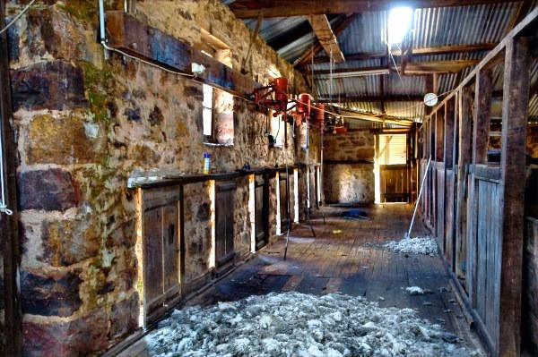 Mundarra Station shearing shed c1850's