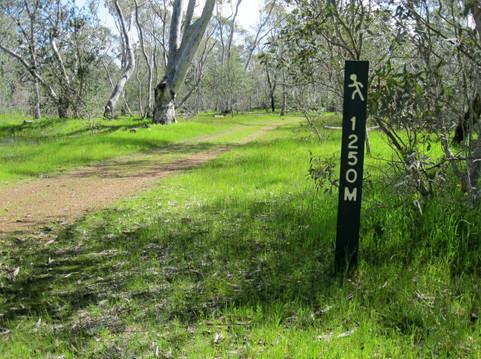 Newland walking track