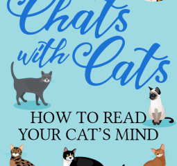 Chats with Cats is a treasure cat lovers will enjoy