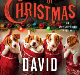 Caturday Reads:  Andy Carpenter returns in The Twelve Dogs of Christmas