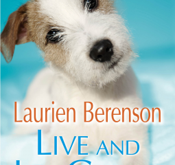 Caturday Reads:   From Poodles to Thoroughbreds Live and Let Growl is a Winner