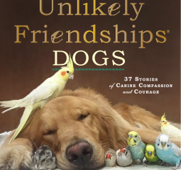 Caturday Reads: Unlikely Friendships - Dogs