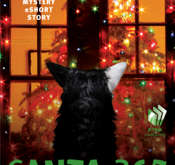 Chet and Bernie deliver a happy holiday in Santa 365