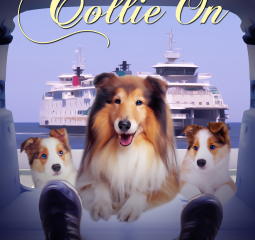 Stay Calm and Collie On
