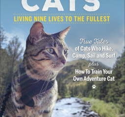 Caturday Reads:  Is your cat an adventurer?