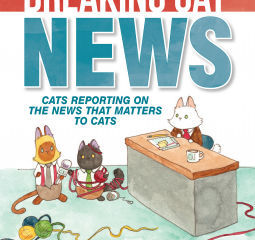 Caturday Reads: Breaking Cat News is cute but unexceptional