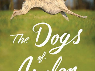 Caturday Reads:  The Dogs of Avalon