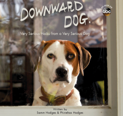 Caturday Reads: Downward Dog - Very Serious Haiku from a Very Serious Dog