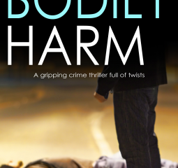 Crime thriller gives insiders view on British policing