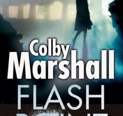 Flash Point is a frighteningly realistic thriller