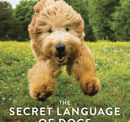 Caturday Reads: Learn The Secret Language of Dogs