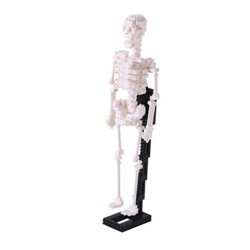 Nano Block Human Skeleton