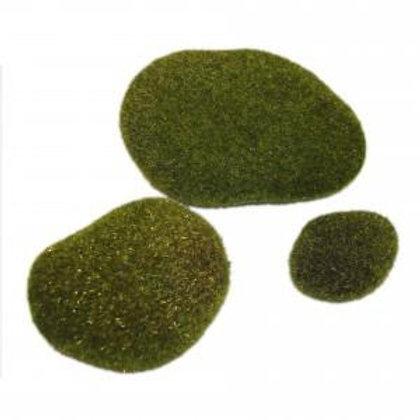 Moss Rocks - 6 Pack