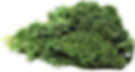 Download-Kale-PNG-Photos.png