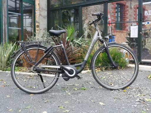 Vélo adulte VTC / VAE