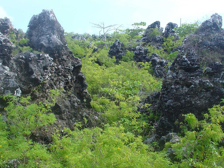 Banaba: The island Australia Ate