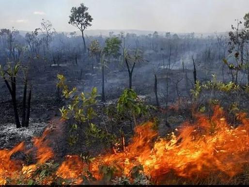 Avião de Bolsonaro arremete. Muita fumaça das queimadas
